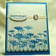 BIRTHDAY CELEBRATIONS CARD