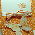 SHAVING CREAM BUTTERFLY CARD