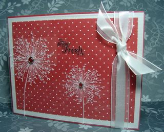 POLKA DOT WINDOW CARD