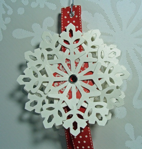 SNOWFLAKE CLOSE UP-1